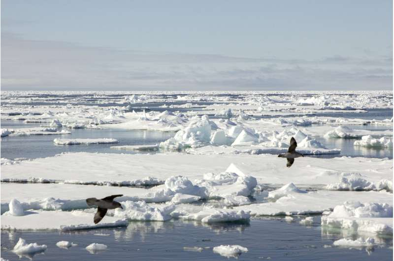 Artificial intelligence could revolutionize sea ice warnings
