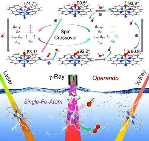Scientists identify electronic and structural dynamics of catalytic centers in single-Fe-atom materials