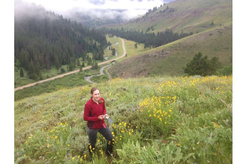 Study reveals impacts of climate change on migrating mule deer