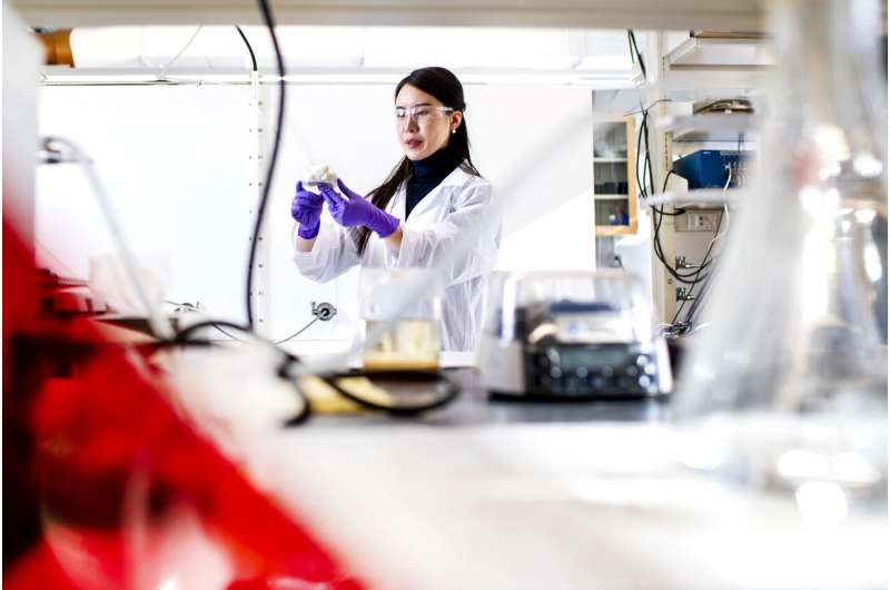 Nanomaterials derived from cellulose could make renewable energy cheaper