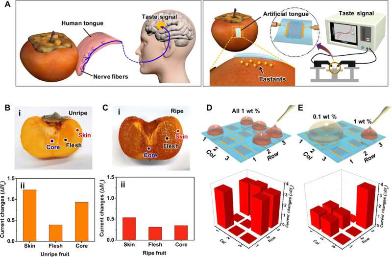Soft and ion-conducting hydrogel artificial tongue for astringency perception