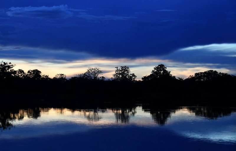 Researchers say the urbanization of once-wild areas like the Amazon contributes to the emergence of diseases that pass from anim