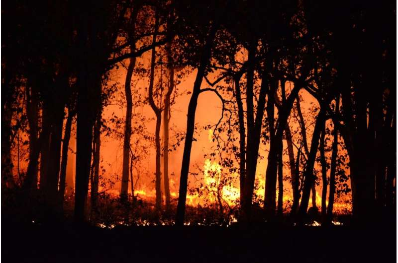How climate change will impact prescribed burning days