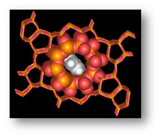 Researchers discover new building blocks of catalyst zeolite nanopores