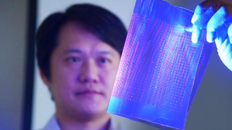 Scientists Encapsulate Quantum Dots in Salt