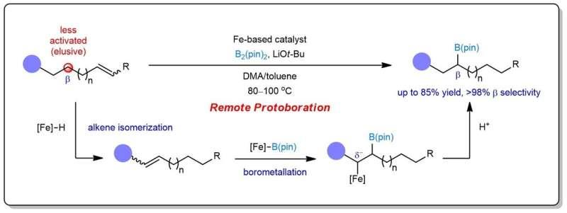 Sustainable iron catalysis enables controllable alkene borylation