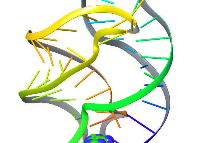UMD researchers use artificial intelligence language tools to decode molecular movements