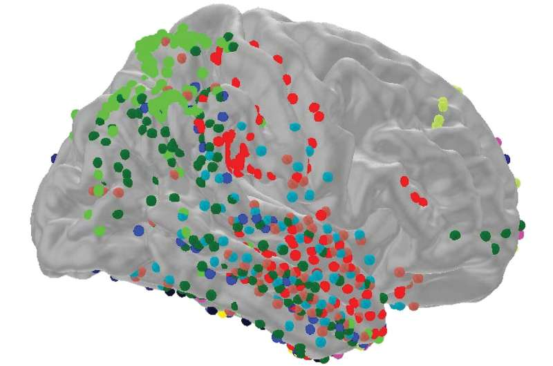 Researchers reveal how our brains know when something's different