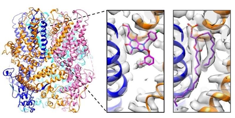 Understanding ion channel inhibition to open doors in drug discovery