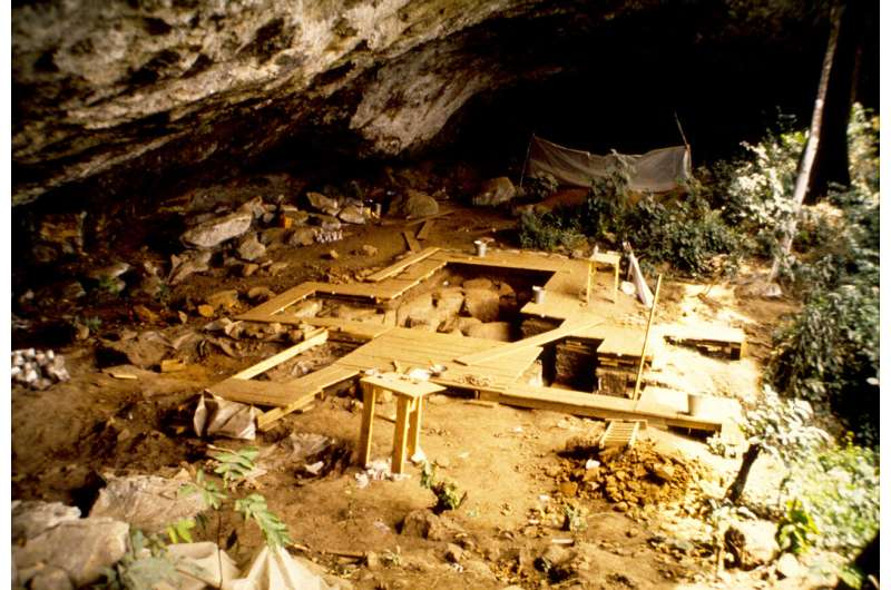 First ancient DNA from West/Central Africa illuminates deep human past