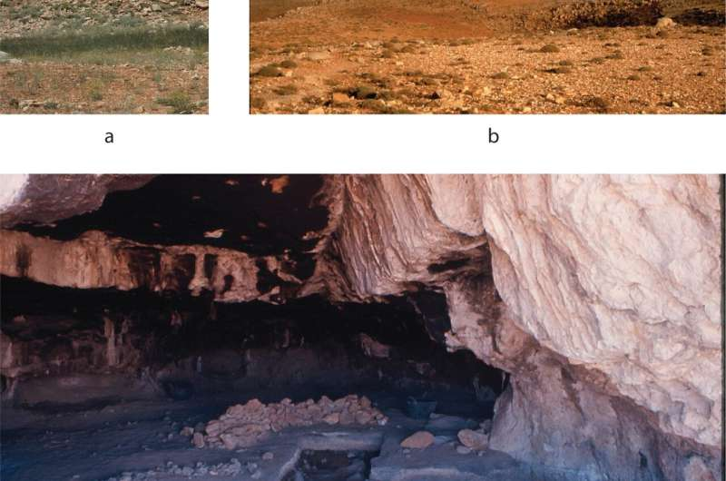 Anthropologists confirm existence of specialized sheep-hunting camp in prehistoric Lebanon