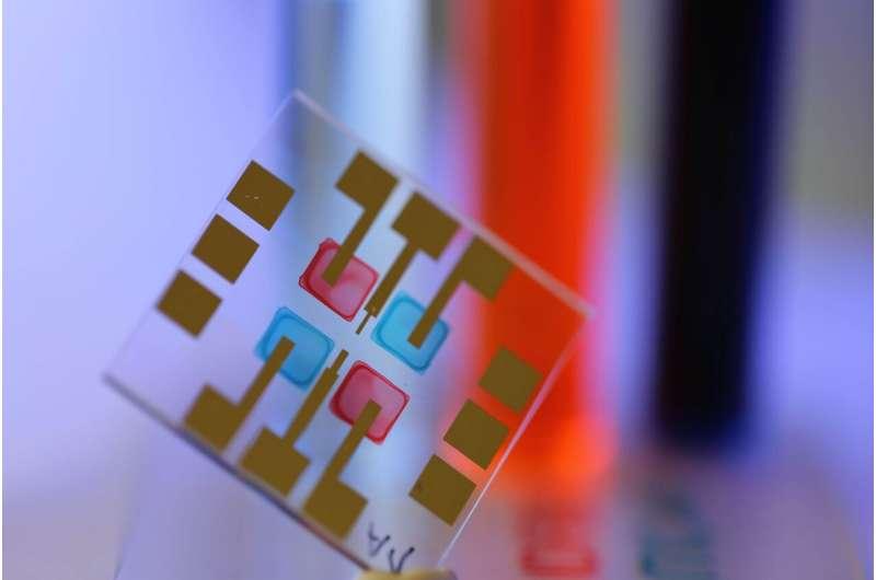 Having an Eye for Colors: Printable Light Sensors