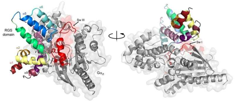 An understudied cause of cancer: Mutations in regulators of cell signaling