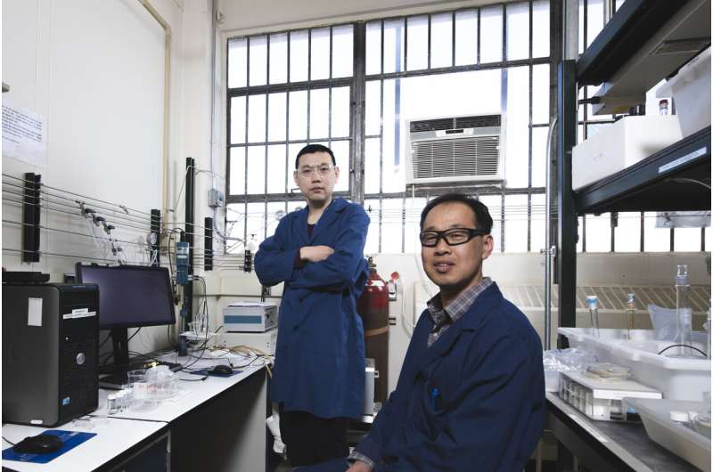 Water splitting advance holds promise for affordable renewable energy