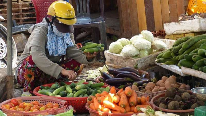 COVID-19 — Another wake up call for food security