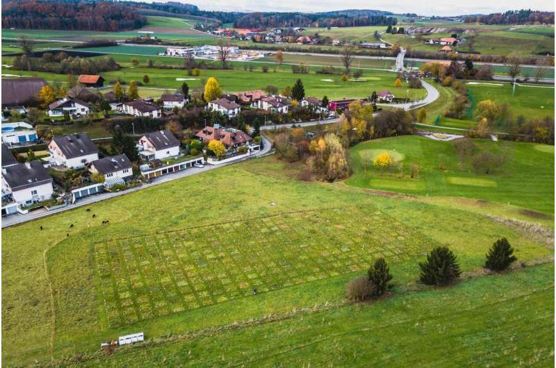 How does an increase in nitrogen application affect grasslands?