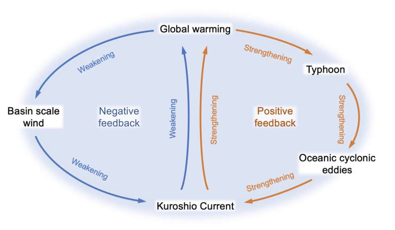 Evidence found of Kuroshio current strengthening due to intensifying tropical cyclones