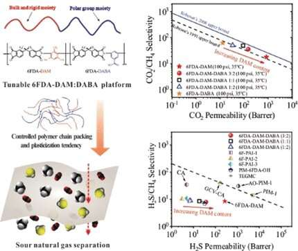 Polyimide membranes for the purification of natural gas