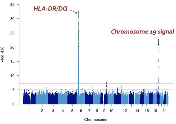 Discovery of new disease-susceptibility gene for steroid-sensitive nephrotic syndrome