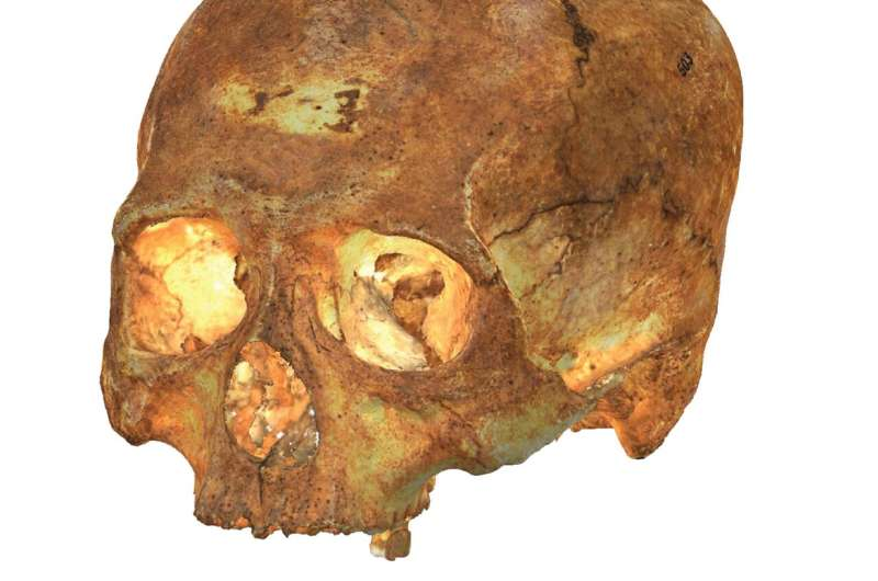 Unprecedented 3-D reconstruction of pre-Columbian crania from the Caribbean and South America