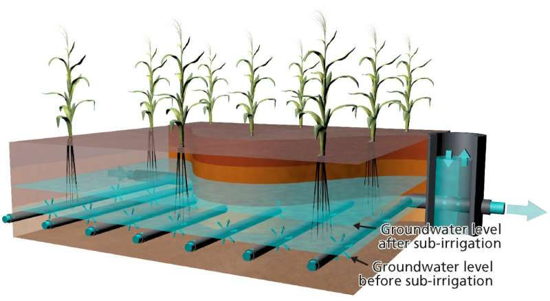 Solution to water shortages: Reuse of sewage for groundwater fed irrigation