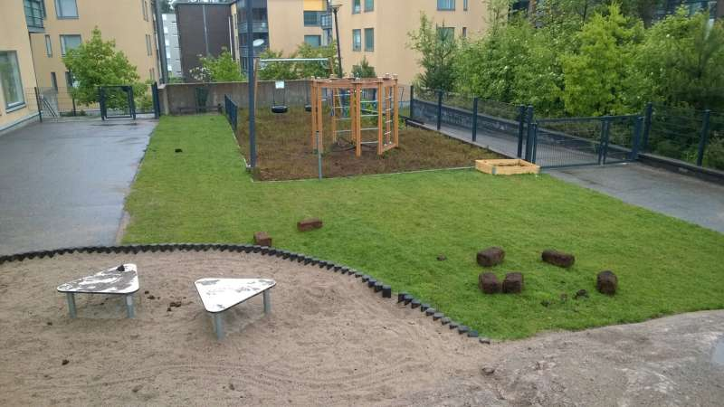 Replacing asphalt with forest-type plants at daycare centers found to strengthen immune defenses in children