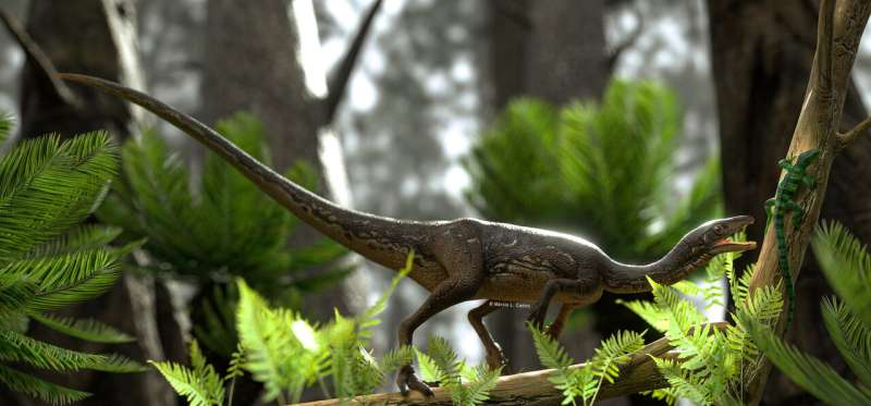 Researchers reconstruct the first complete brain of one of the oldest dinosaurs