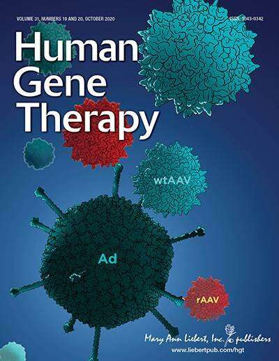 Risk of AAV mobilization in gene therapy
