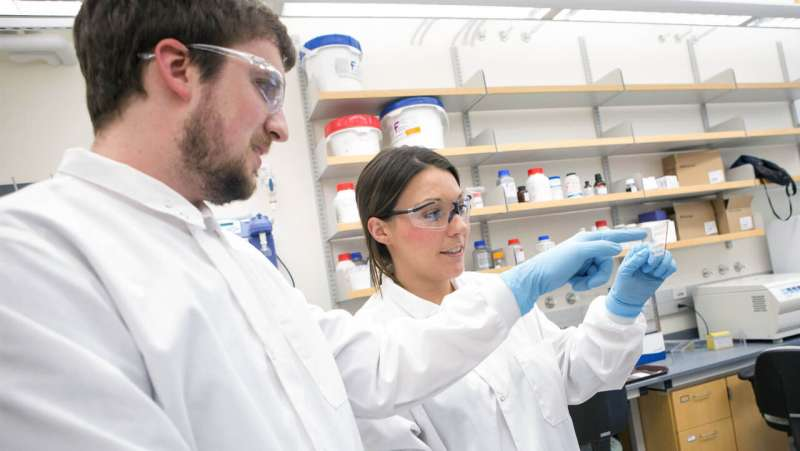 Team discovers new connection between Alzheimer's dementia and Dlgap2