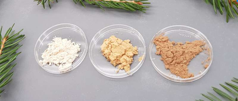 The properties of a promising stabiliser found in spruce can be adjusted using extraction techniques