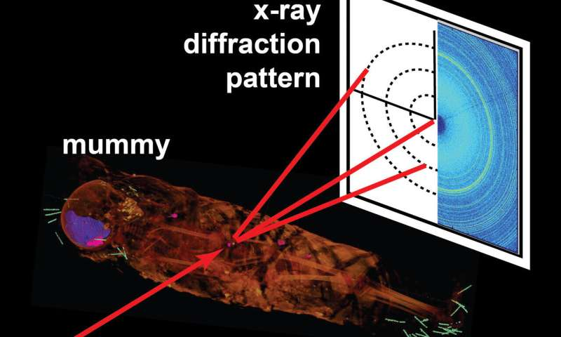 X-ray diffraction reveals details inside mummies without having to open them up