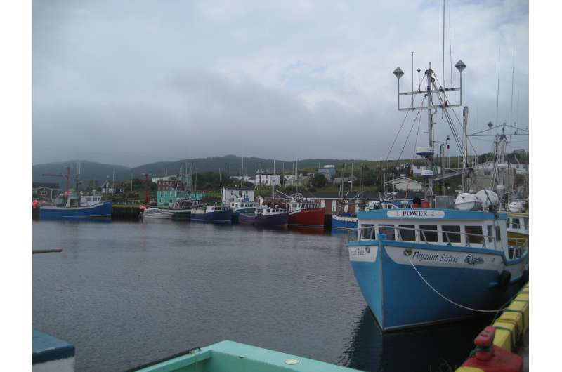 Planning ahead protects fish and fisheries