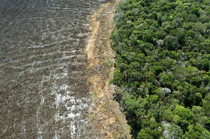 An aerial view of a deforested area close to Sinop, in Brazil's Mato Grosso State in August 2020