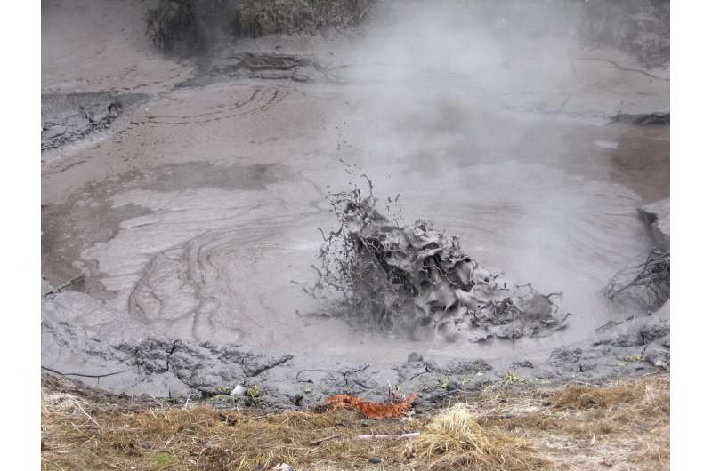 New insight into the evolution of complex life on Earth