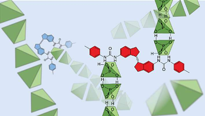 Shining a light on the weird world of dihydrogen phosphate anions