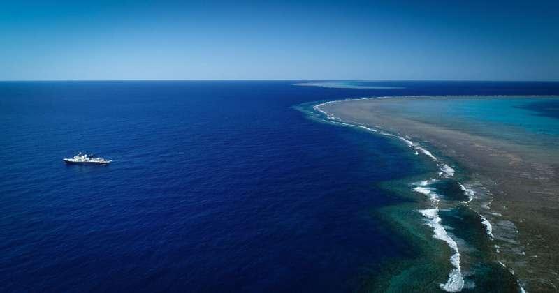 Scientists discover 500-meter-tall coral reef in the Great Barrier Reef–first to be discovered in over 120 years