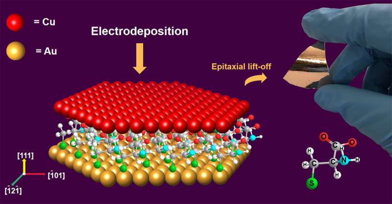 Researchers use amino acids to grow high-performance copper thin films