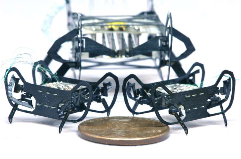 Next-generation cockroach-inspired robot is small but mighty