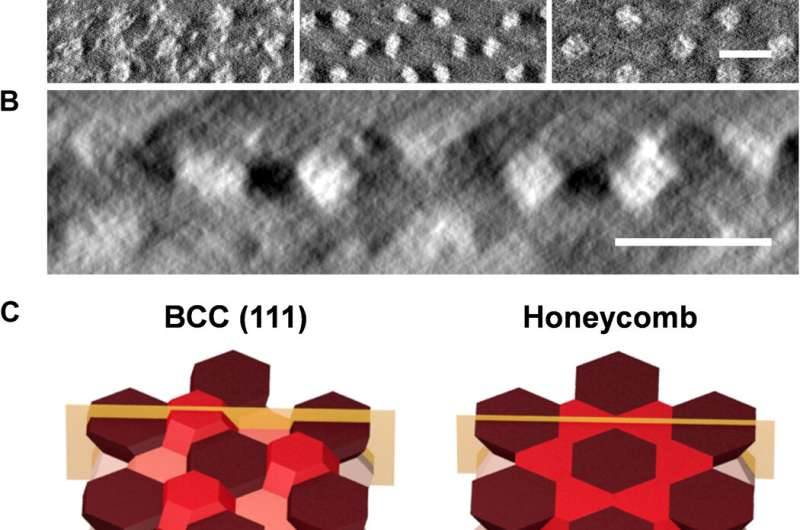 Three-dimensional superlattice engineering with block copolymer epitaxy