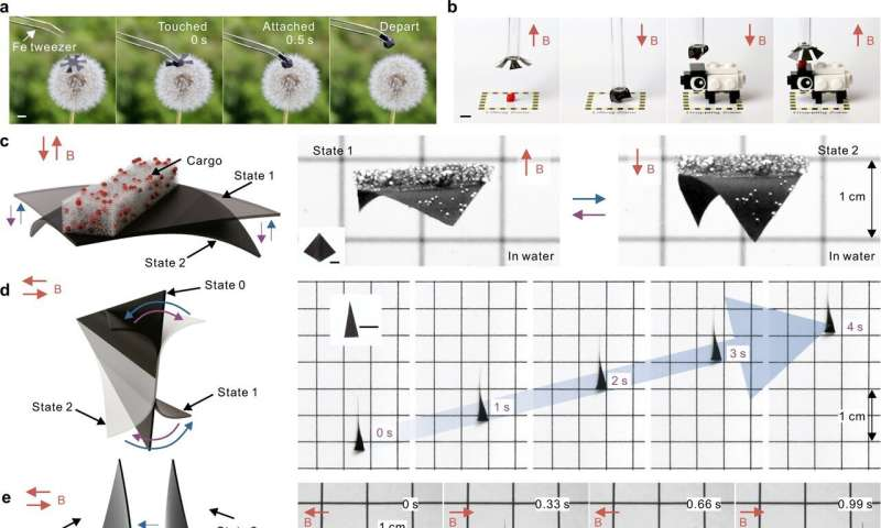 Researchers create fly-catching robots