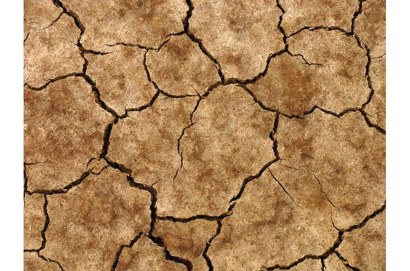 Climate change affects soil health
