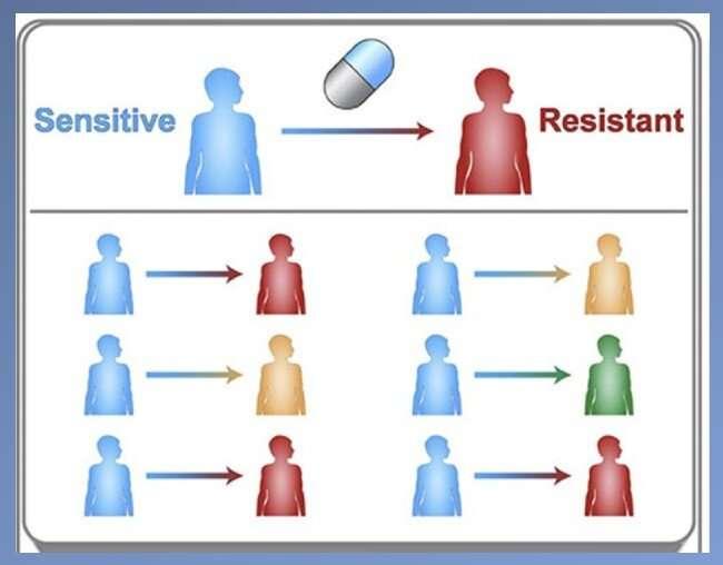 Computer model IDs drug-resistant mutations