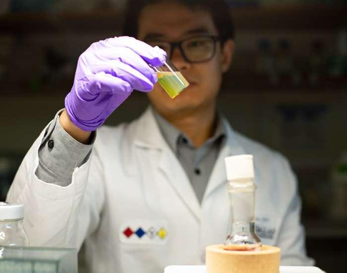 Researchers' method holds promise for brain study, better tests for viruses