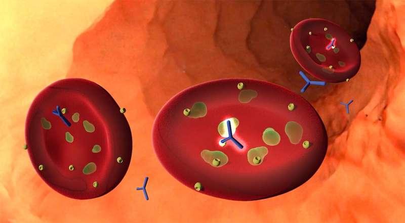 Research reveals a new malaria vaccine candidate