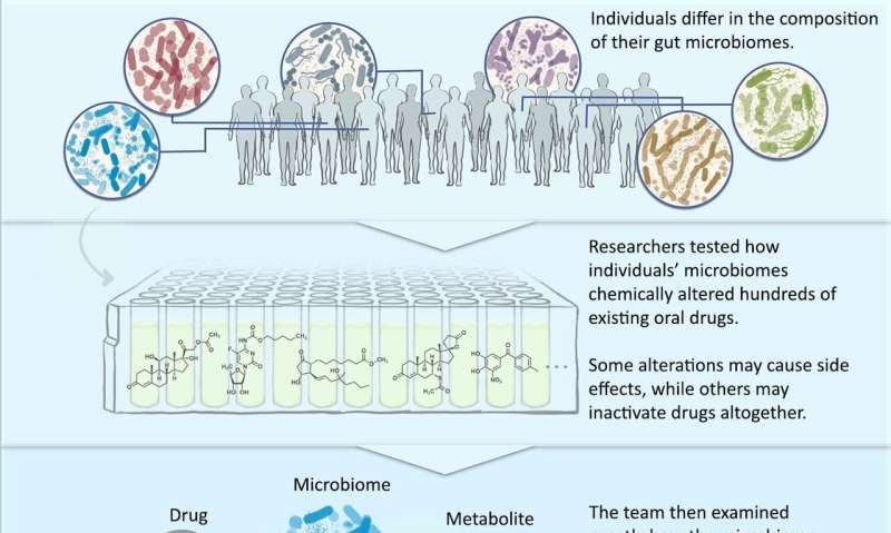 Study investigates potential for gut microbiome to alter drug safety and efficacy