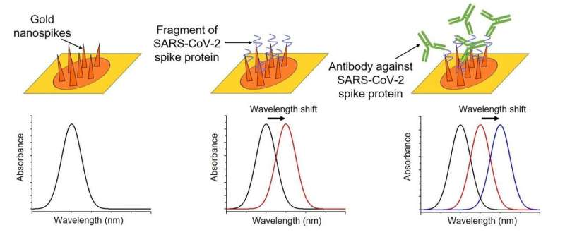 Scientists develop low-cost chip to detect presence and quantity of COVID-19 antibodies