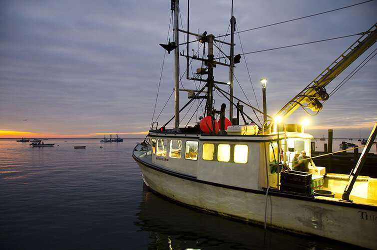 COVID-19 pandemic had big impact on commercial fishing in Northeast