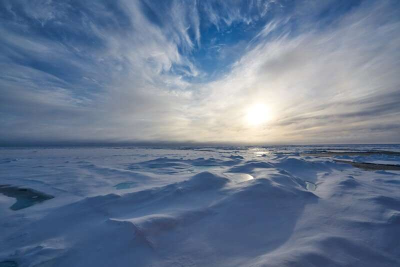 A carbon sink shrinks in the arctic
