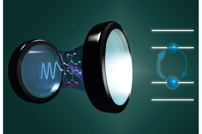 Accurate theoretical modeling unravels changes in molecules interacting with quantum light
