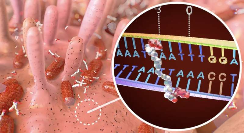 A common gut microbe secretes a carcinogen